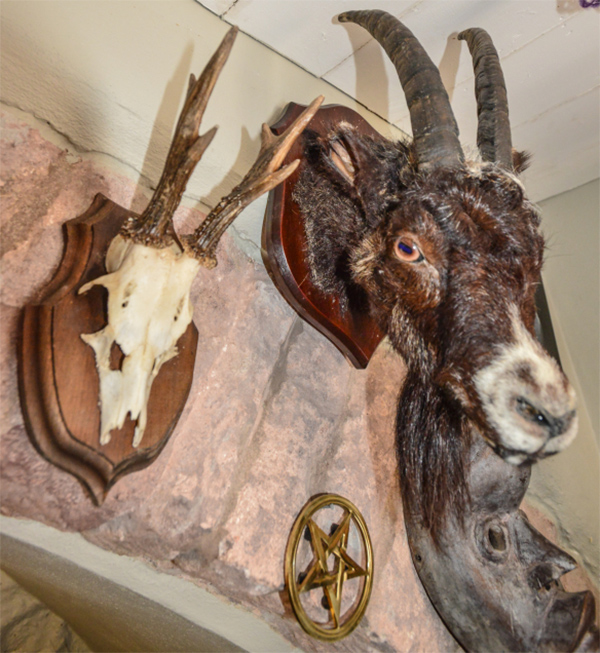 Goat and Rams head